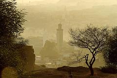 View of Fez medina   مدينة فاس by Vince Millett