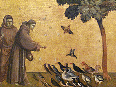 St. Francis addressing the birds (predella) by adotmanda