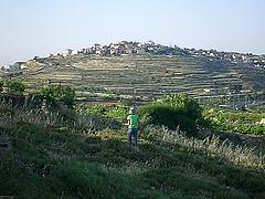 Palestine_al_Khadr_NK20838 by gnuckx