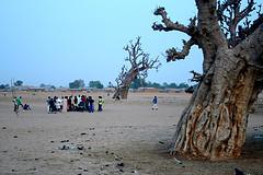 Half-time, Damaturu football match by Jeremy Weate