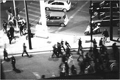 Golden Dawn demo by Sofia Z.