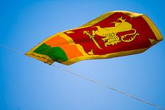 Sri Lankan flag by Dhammika Heenpella