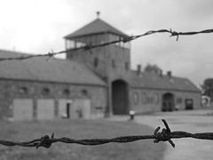 Auschwitz - Birkenau - Gates of Hell - barbed wire, by harshilshah100