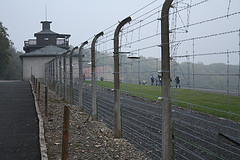 Buchenwald barbed wire, by Lars K. Jensen