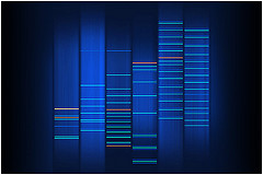 Minimal Blue DNA