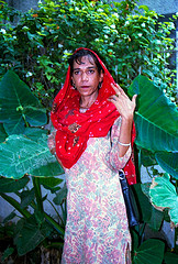 Hidra of Panscheel Park, New Delhi, India, 1994