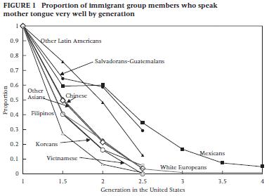 移民言語の寿命グラフ