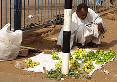 Lemons & limes by travelingsuep