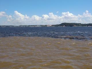 near Manaus, Brazil