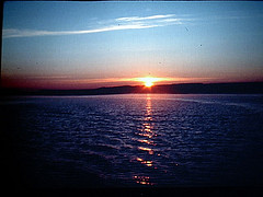 Midnight Sun by morrison1375
