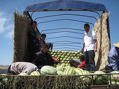 Water melon farmers in Ningxia by Bert van Dijk