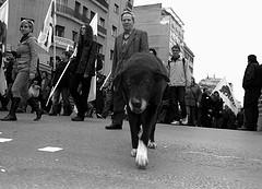 Strikehound by 0neiros